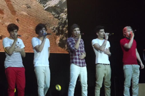 One Direction - Susquehanna Bank Center - Camden, NJ - May 28, 2012 - photo by Sami Speiss � 2012